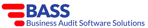 Business Auditing Software Solutions Logo